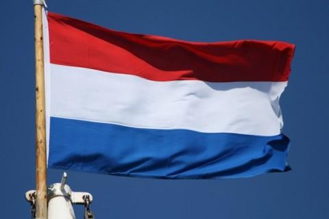Empleo en Holanda. Ofertas de trabajo