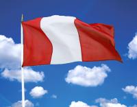 Los españoles podrán votar en las elecciones municipales de Perú