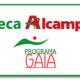 Becas Gaia-Alcampo para realizar prácticas dentro y fuera de España