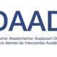 Becas para la realización de cursos intensivos en Alemania